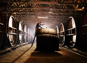 wine tasting wine barrels